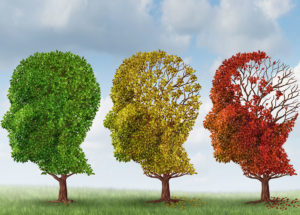 A new type of neuron has been discovered to help people with Alzheimer's